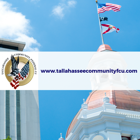 Tallahassee Community Federal Credit Union Website Image